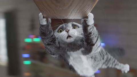 Mog takes over the ad break for Sainsbury's