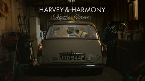 thinkbox tv ads harvey harmony kiss